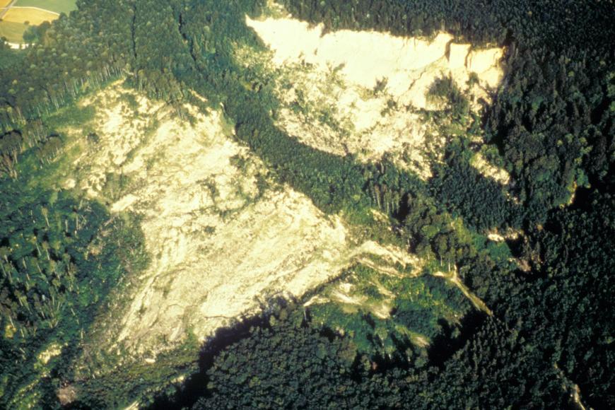 Luftbild einer Rutschung an einem bewaldeten Berghang. Die großen Rutschflächen unterscheiden sich in ihrer hellen Farbe deutlich vom Grün der Bäume. Die Fließrichtung geht von rechts oben nach links unten.