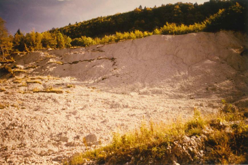 Blick auf eine helle Abrisskante und links sich ausbreitende Rutschmassen. Oberhalb der Kante ist ein höher verlaufender bewaldeter Berghang erkennbar.