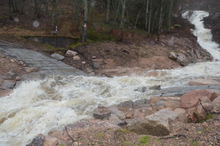 Zu sehen ist ein stark angeschwollener Bach, der einen bewaldeten Hang hinunterfließt. Im Vordergrund überfließt der Bach eine Furt. Am rechten oberen Bildrand ist ein Stahlnetz im Bach zu erkennen, welches von einem Ufer zum anderen gespannt ist.