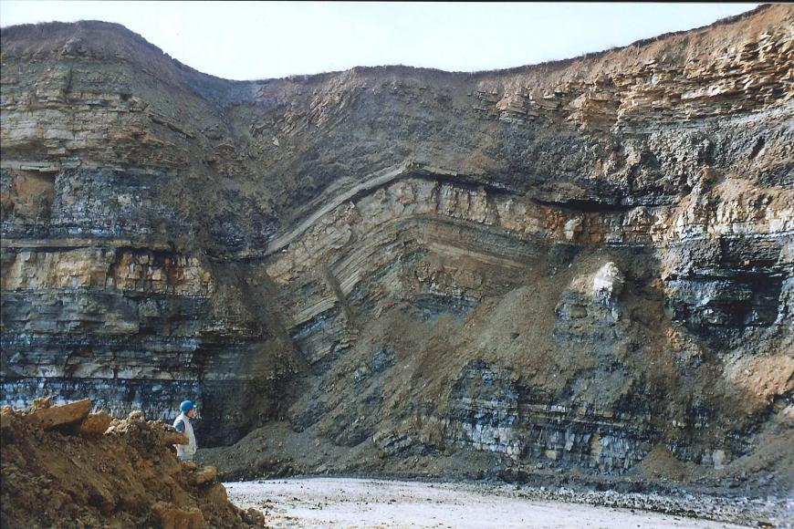 Das Bild zeigt eine Gesteinswand in einem Steinbruch aus schichtigem, dunkelgrauen und beigen Gestein. In der Mitte der Wand hat sich entlang einer Störung eine nach unten geöffnete Falte gebildet.
