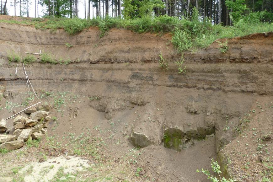 Blick auf eine links abknickende Steinbruchwand. Das hellbraune Gesteins- und Erdmaterial zeigt unterhalb der begrünten Kuppe mehrere waagrecht verlaufende Streifen. Links liegen einige losgelöste Steine.