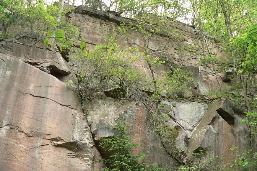 Blick auf eine steil aufragende, rötlich graue und im unteren Teil unregelmäßig geformte Felswand mit Rissen, Spalten und Nischen. Im hinteren oberen Teil wachsen Bäume auf und entlang der Felswand, im Vordergrund kommen noch Sträucher hinzu.