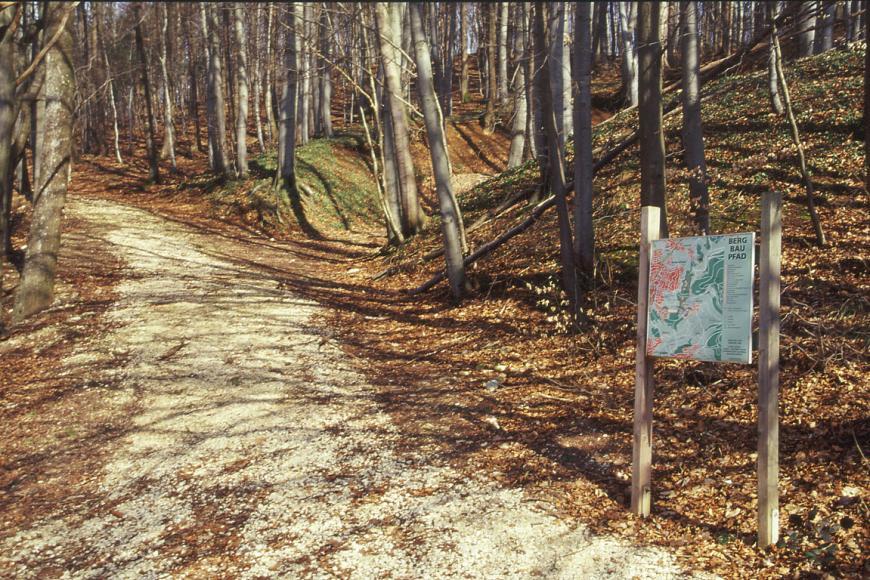 An einem nach rechts ansteigenden Waldhang führt ein Schotterweg entlang. Zum Hintergrund hin ist ein Böschungseinschnitt erkennbar. Rechts im Vordergrund steht eine Schautafel, die den Weg als Bergbaupfad ausweist.