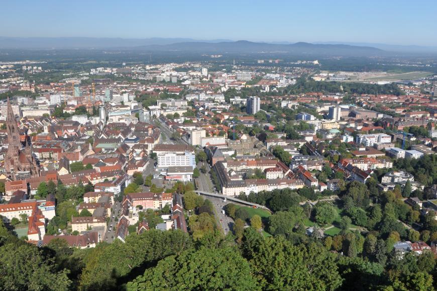 Von sehr hohem Standort blickt man über Baumwipfel auf eine bis fast zum Horizont ausgebreitete Stadt mit einem gotischen Münster am linken Bildrand. Den dunstigen Hintergrund begrenzen Bergketten.