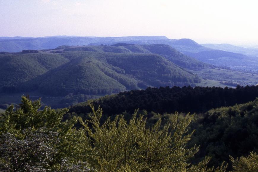 Weiter Blick über Wälder auf zum Horizont hin gestaffelte, bewaldete Berg- und Hügelrücken.