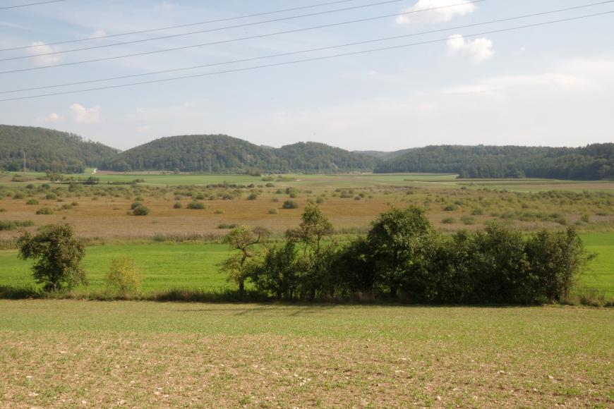 Blick über leicht wellige Äcker, Wiesen und Schilfgebiete mit Buschwerk. Davor einzelne niedrige Bäume. Im Hintergrund stehen mehrere bewaldete Bergkegel und -rücken.