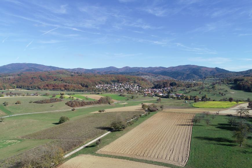 Blick von erhöhtem Standpunkt über Felder mit vereinzelten Bäumen und Büschen auf eine Siedlung vor einer bewaldeten Bergkette, welche in den blauen Himmel ragt.