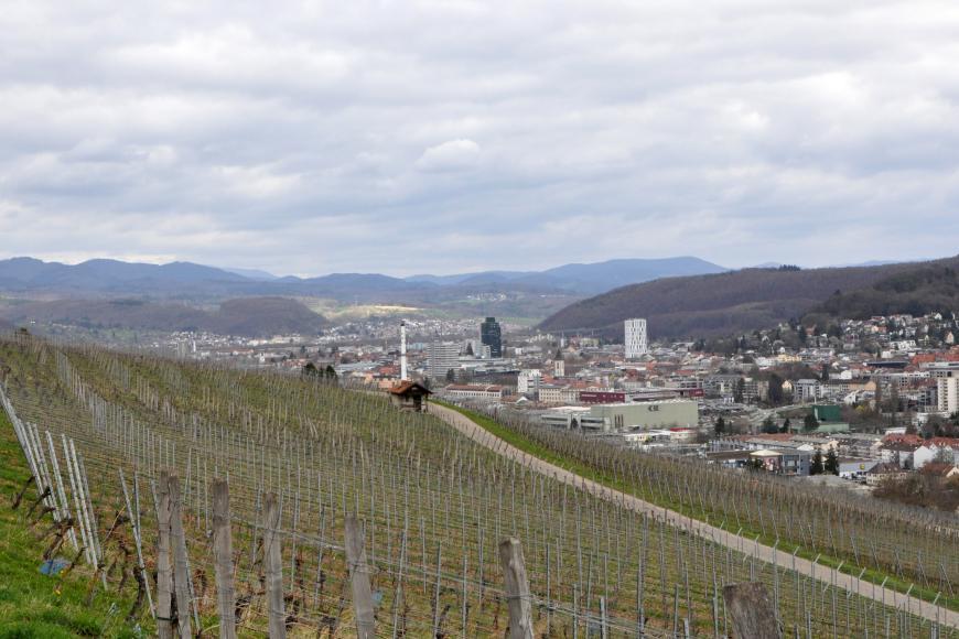 Blick auf einen nach links ansteigenden Weinberg im Vordergrund. Von rechts zieht sich eine größere Siedlung um bewaldete Höhen bis zum Hintergrund. In der Ferne sind Bergketten sichtbar.