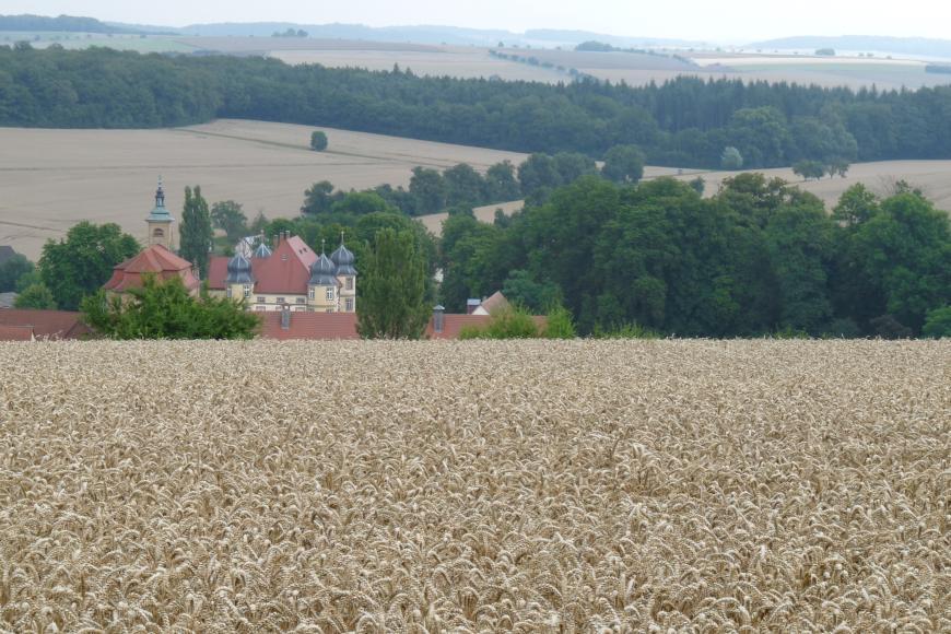 Von einem hoch gelegenen Getreidefeld geht der Blick über eine weite, von Ackerflächen und Waldstreifen durchzogene Hochebene, die bis zum Horizont reicht. Links unterhalb des Feldes sind die Dächer einer Ortschaft erkennbar.
