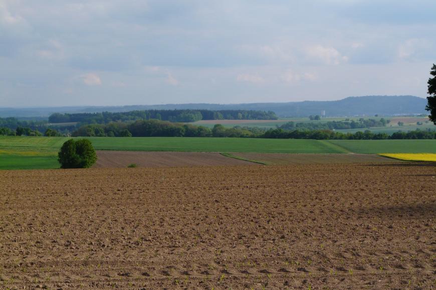 Hinter einem braunen, von links nach rechts gefurchten Acker zeigen sich weitere, dunklere Äcker sowie Grünlandflächen. Im Hintergrund sind Waldstreifen sowie ein bewaldeter Höhenzug zu erkennen.