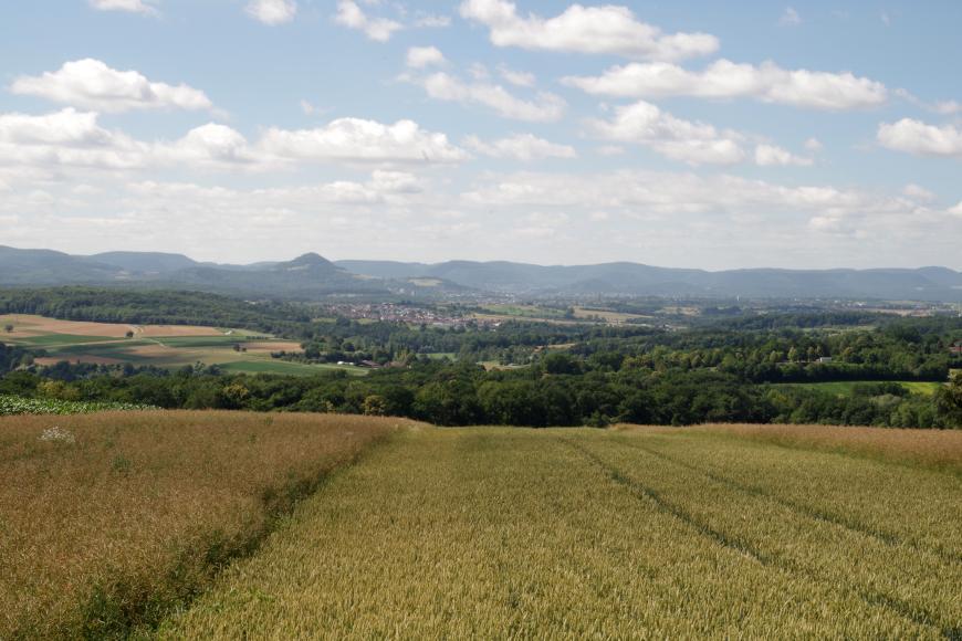 Blick über ein Feld in ein Tal mit größeren Baumgruppen und Siedlungen. Im Hintergrund erkennt man eine Bergkette.