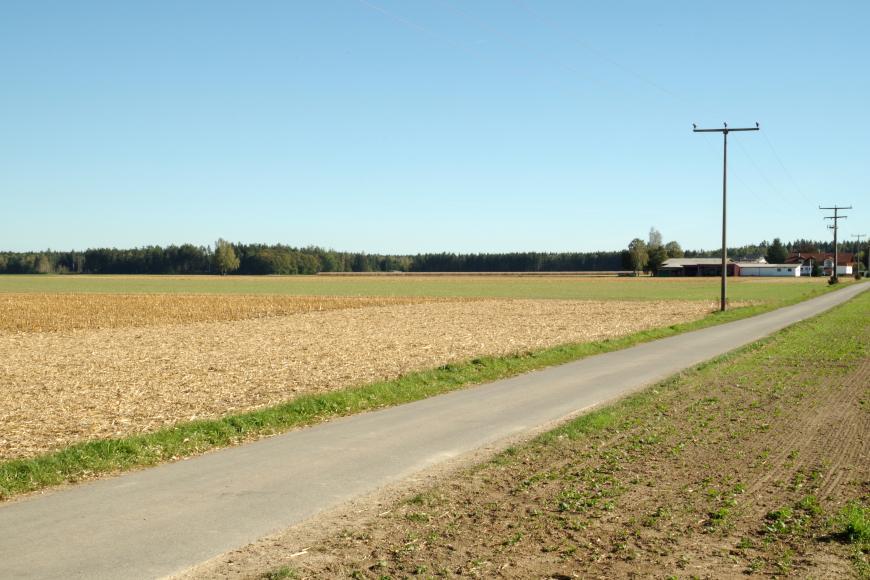Blick auf eine Ebene. Von links unten nach rechts mittig verläuft eine Straße mit Strommasten daneben. Links und rechts der Straße befinden sich Felder. Im Hintergrund ist Wald zu erkennen.