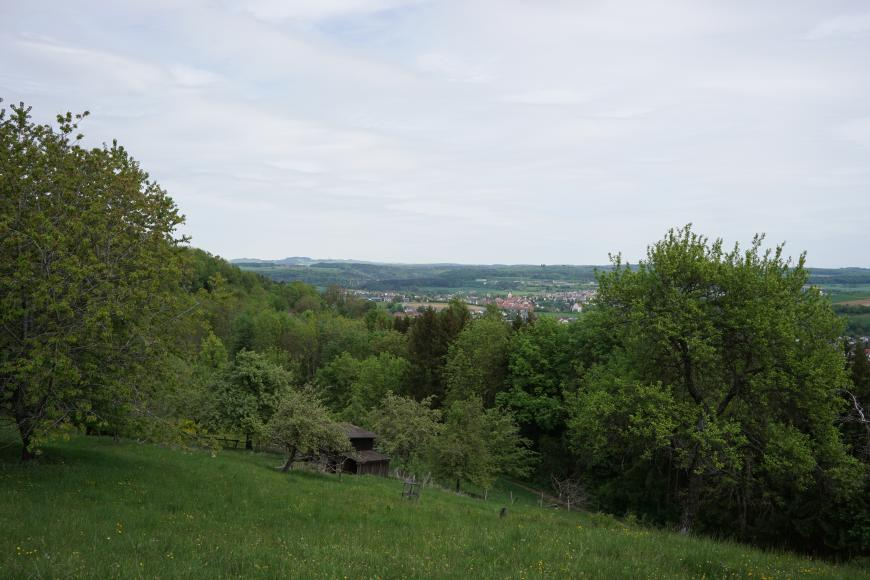 Im Vordergund befindet sich ein mit Gras und Büschen bewachsener Rutschhang. In der Ferne ist besiedelte Landschaft zu sehen.