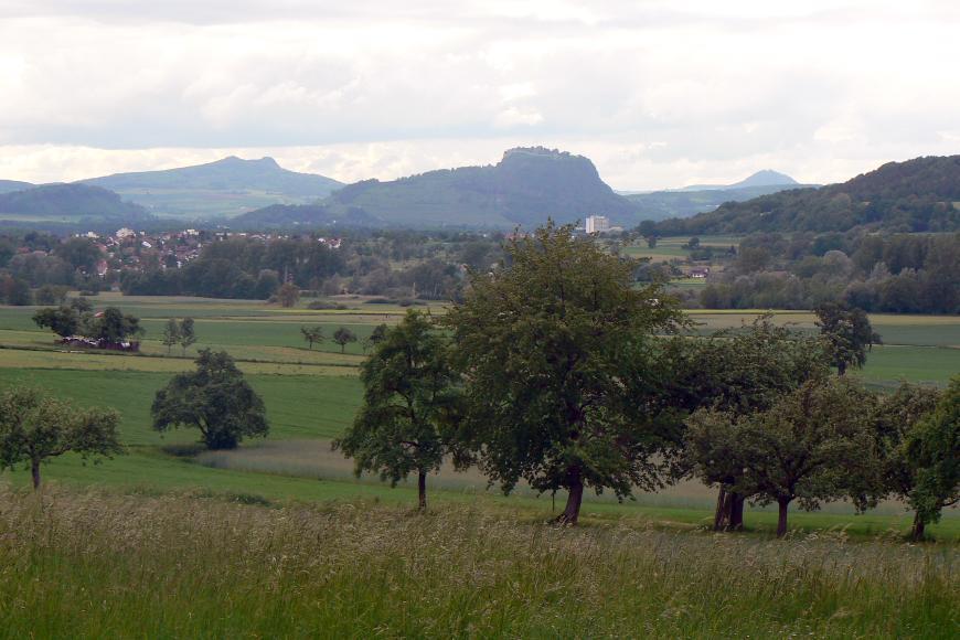 Blick über eine Wiese mit vereinzelten Bäumen auf Siedlungen und die Hegau-Vulkane.