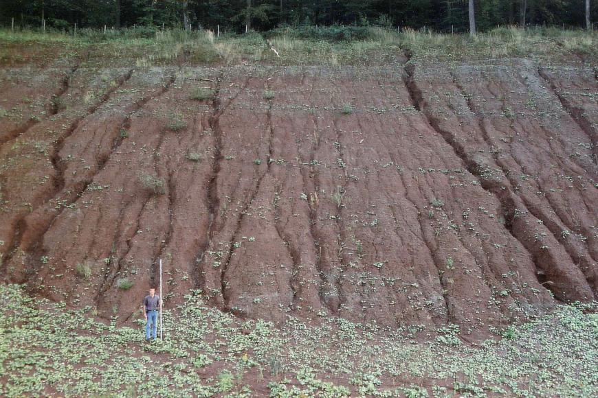 Blick auf eine hohe, zum Hintergrund hin ansteigende Abbauwand in einer Tongrube. Die rötlich graue, an eine Gletscherzunge erinnernde Gesteinswand ist von zahlreichen, senkrecht verlaufenden Rissen und Spalten durchzogen.
