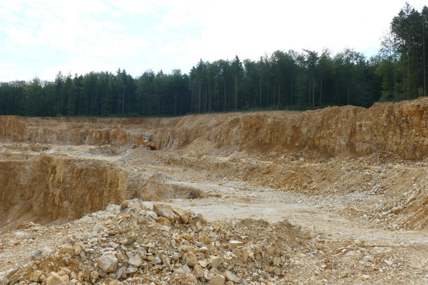 Der Betrachter befindet sich auf der Abbaustufe eines Steinbruchs, in welchem gelblich-beiges, gebanktes und geklüftetes Gestein abgebaut wird. Im Hintergrund befindet sich dunkler Wald.