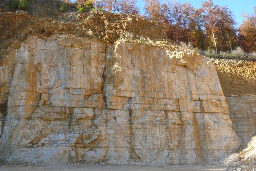 Blick auf eine mehrere Meter hohe Abbauwand in einem Steinbruch. Die unteren vier Fünftel der Wand bestehen aus quaderförmigen, hellbeige bis gelblichen Blöcken, darüber befindet sich löchriges, rostbraunes Gestein. Über der Wand wachsen Bäume.