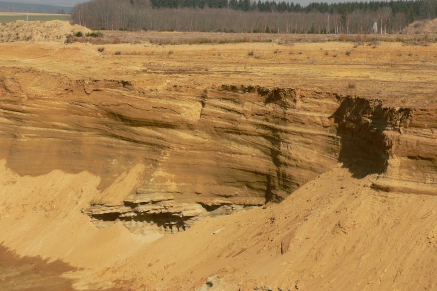 Das Bild zeigt die rötlich braune Abbauwand einer Sandgrube mit schräg verlaufender Schichtung. Am Fuß der Wand sowie rechts vorne sind abgerutsche Halden erkennbar. Im Hintergrund steht Wald an.