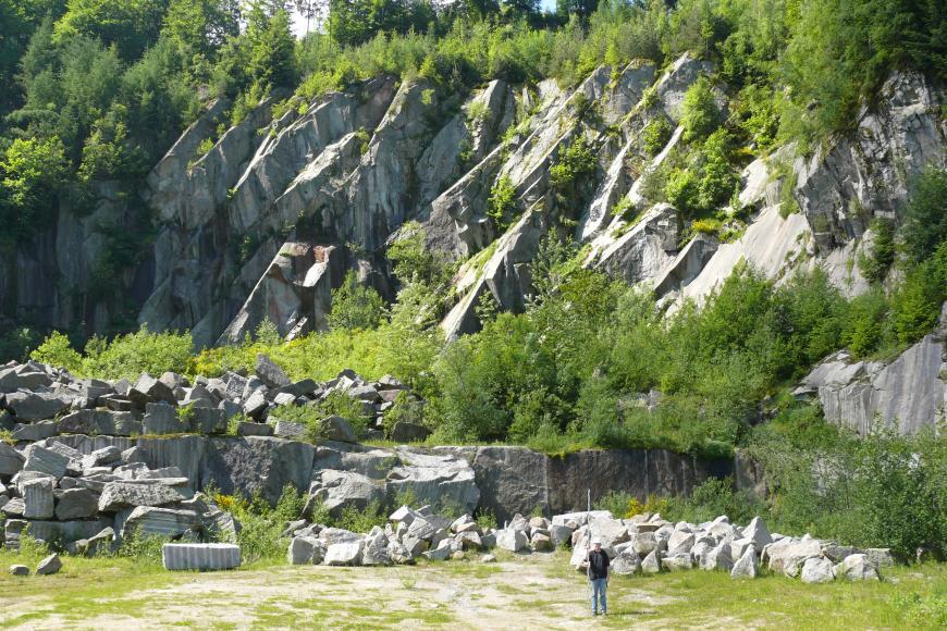 Blick in einen Steinbruch aus grauem Gestein. Auf dem Boden liegen einige unterschiedlich große Gesteinsblöcke, die hohe Abbauwand ist stark geklüftet mit schräg einfallenden Kluftsystemen. Der Steinbruch ist bewachsen. Im Steinbruch steht ein Mensch.