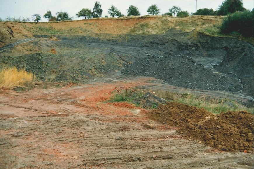 Übersichtsaufnahme einer Tongrube. Der anstehende Ton ist grau, darüber befindet sich gelblicher Lehm, teilweise sind die Abbauflächen bewachsen. Im Hintergrund über der Grube sind einige Bäume zu erkennen.