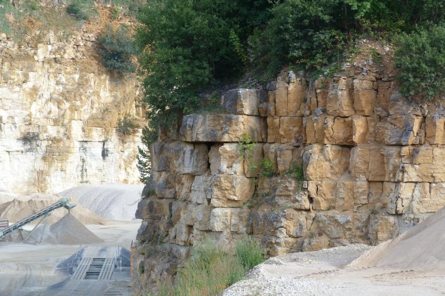Im Vordergrund rechts ist eine Kalksteinwand in einem Steinbruch zu erkennen. Das Gestein ist hellgelb und steht dickbankig an. Über dem Aufschluss wachsen Büsche.