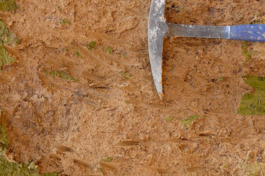 Nahaufnahme eines hell- bis mittelbraunen Gesteins mit vereinzelten hellgrünen Flecken. Rechts oben befindet sich ein Hammer als Maßstab.