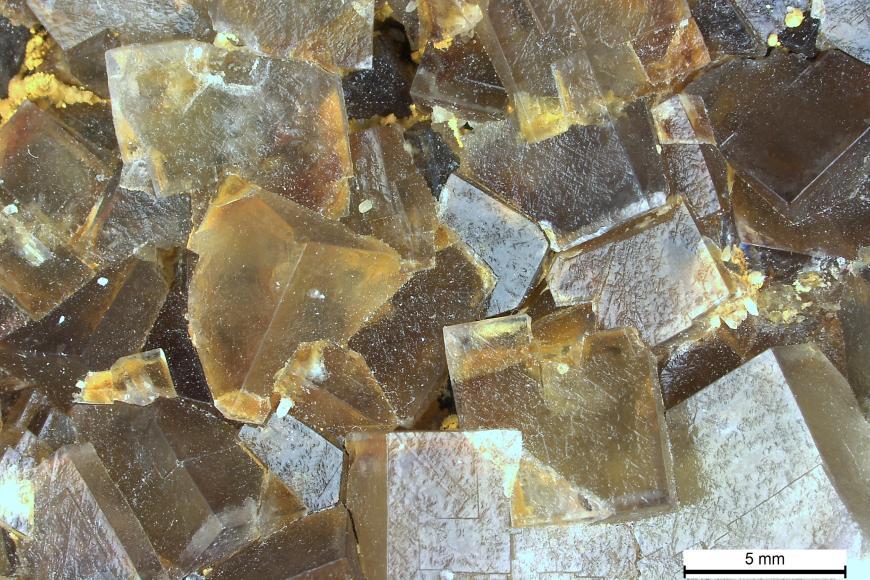 Vergrößerte Aufnahme von durchsichtigen bis trüben Kristallen in unterschiedlichen Farben und Formen.