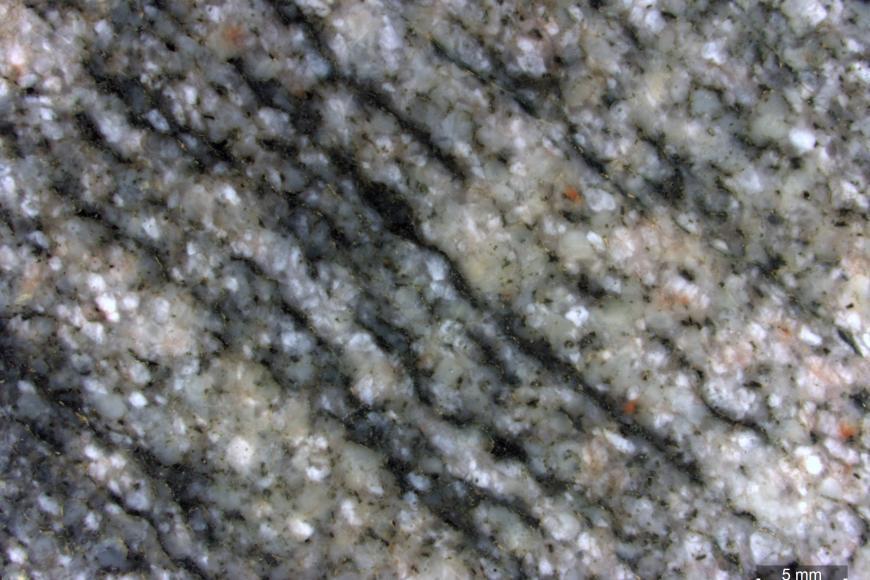 Detailaufnahme eines metamorphen Gesteins mit deutlichen hellen und dunklen Lagen, welche schräg von links oben nach rechts unten durch das Bild verlaufen. Rechts unten befindet sich ein kleiner Maßstab.