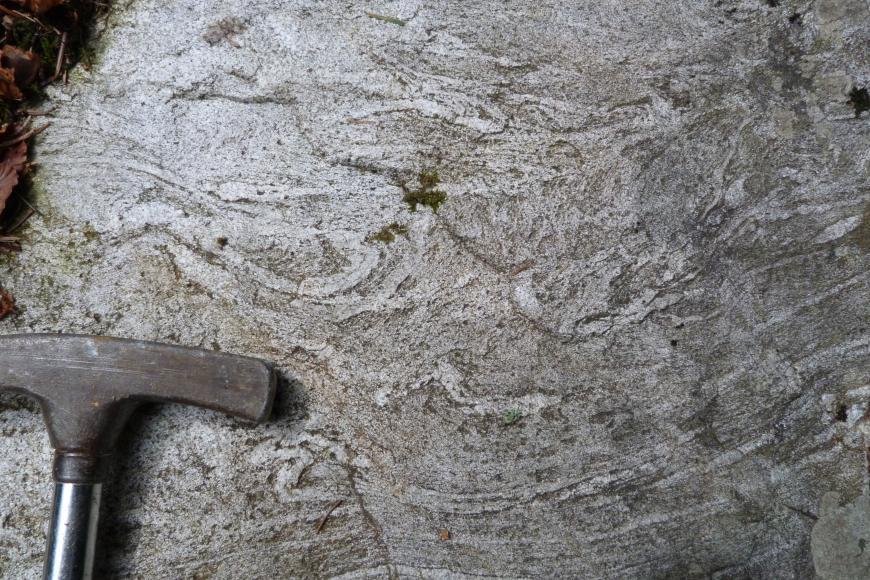 Nahaufnahme eines stark verfalteten hell- bis mittelgrauen Gesteins. In der linken unteren Ecke liegt ein Hammerkopf als Maßstab.