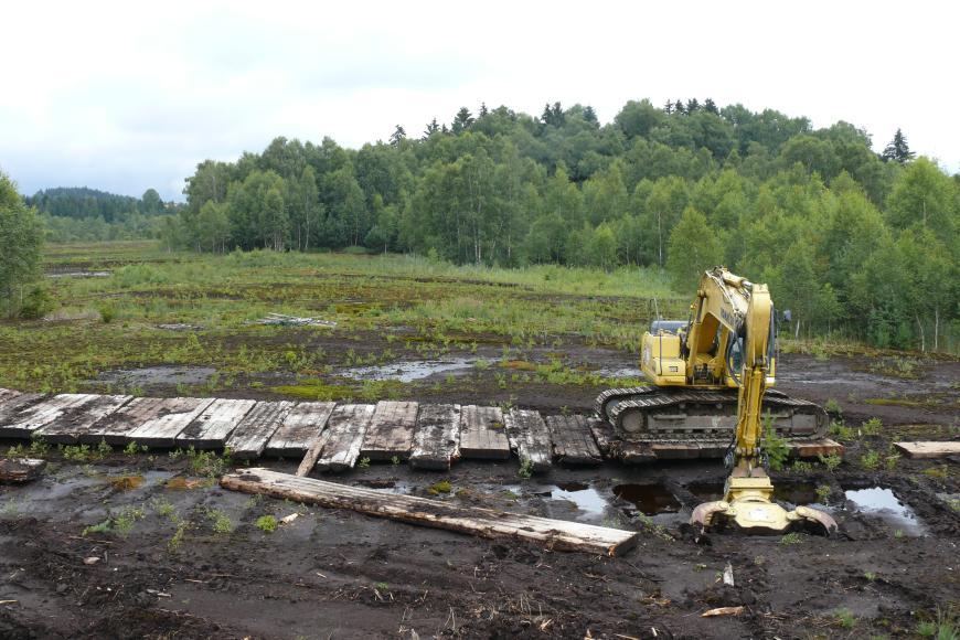 Das Foto zeigt im Vordergrund schwarzbraunes, feuchtes Erdreich, in das ein Bagger mit seitlichen Schaufeln flache, rechteckige Kuhlen gräbt. Die Kuhlen sind mit Wasser gefüllt. Links vom Bagger ist ein Fahrweg zu sehen. Im Hintergrund steht Wald.