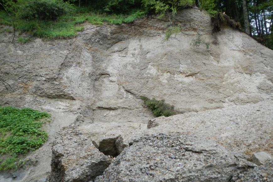 Zu sehen ist eine Felswand aus hellgrauem bis hellbraunem Gestein. Oberhalb ist der Felsen mit Gräsern und Bäumen bewachsen. Unterhalb liegt im Vordergrund ein großer Felsblock.