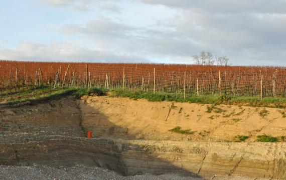 Blick auf eine aus zwei Sohlen bestehende, winkelige und eingezäunte Baugrube mit untenliegendem Schotter. Der von der Sonne erhellte rechte Teil der Grube ist gelblich bis hellbraun. Hinter dem Bauzaun sind Rebstöcke erkennbar.