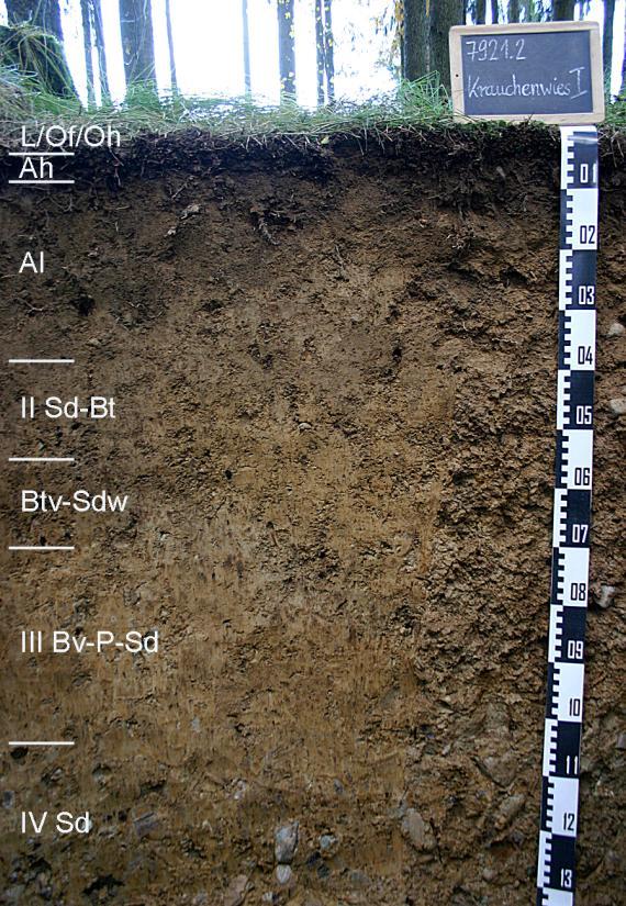 Das Foto zeigt ein Bodenprofil unter Wald. Es handelt sich um ein Musterprofil des LGRB. Das in sieben Horizonte gegliederte Profil ist 1,30 m tief.