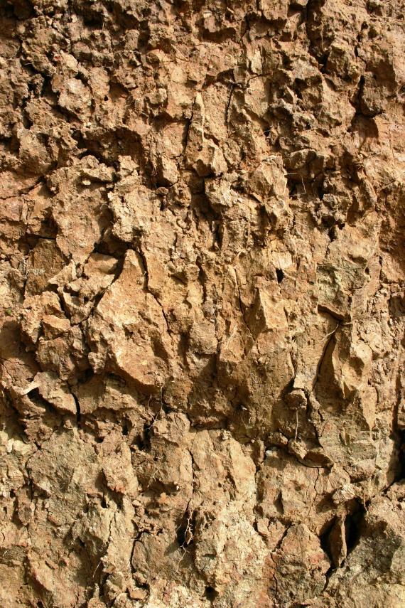Nahaufnahme eines rötlich braunen Bodenprofils. Das Material ist von zahlreichen Rissen durchzogen und weist teilweise scharfe Kanten auf.