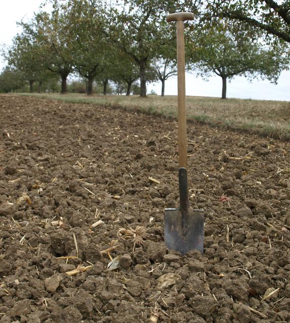Das Bild zeigt einen dunkelbraunen Acker mit bröckeliger Oberfläche. Ein Spaten, der in den Boden gesteckt wurde, zeigt die Größe der Brocken an. Im Hintergrund stehen mehrere Bäume.