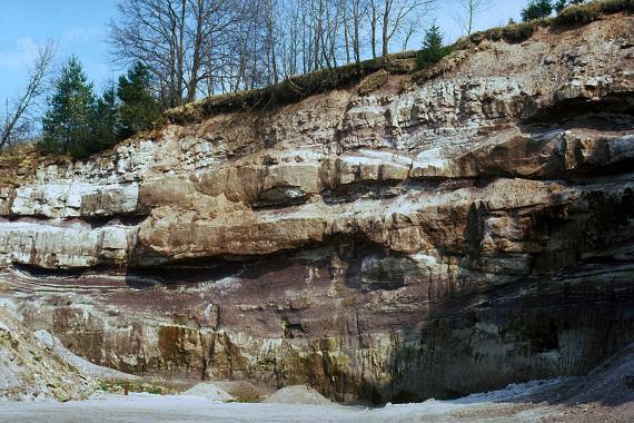 Blick auf eine große, aus unterschiedlichen Schichten aufgebaute Gesteinswand unter dünnem Baumbestand. Die Gesteinspalette reicht dabei von feinen Lagen oben über waagrecht liegende Blöcke mittig und unten; die Farben von gelblich grau bis rotbraun.