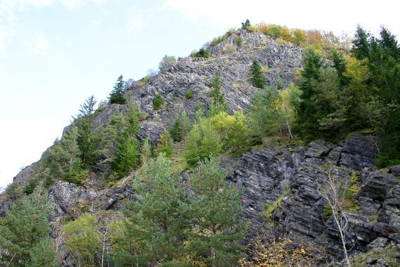 Leicht mit Gebüsch bewachsener Steinbruch. Das Gestein ist dunkel bis schwarz und bildet Säulen aus.