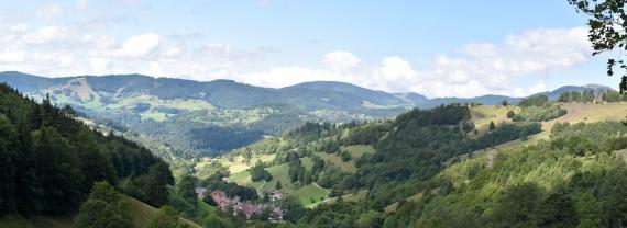 Von erhöhtem Standort bietet sich ein weiter Blick auf eine Schwarzwald-Landschaft mit bewaldeten Bergen im Hintergrund sowie nach links und rechts aufsteigenden, teils waldigen Berghängen im Vordergrund. Im schmalen Talbereich dazwischen stehen Häuser.
