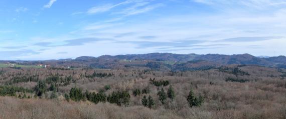 Panoramabild einer hügeligen bis bergigen, überwiegend bewaldeten Landschaft. Eingestreut sind einzelne schmale Hochflächen mit Wiesen und Höfen.