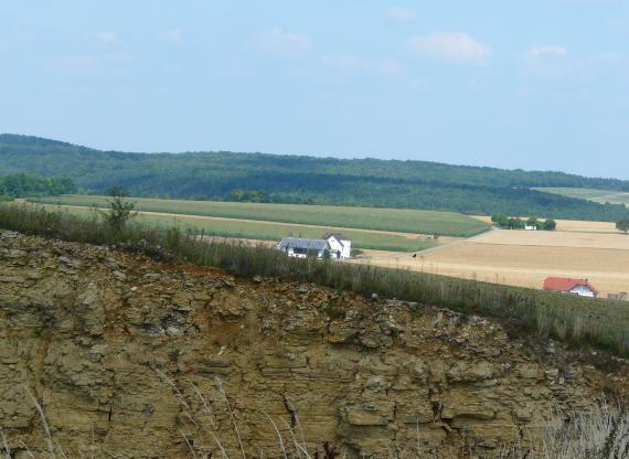 Das Bild zeigt den oberen Rand eines von links nach rechts abgeschrägten Steinbruches. Das streifige, braun gefärbte Gestein ist teilweise mit Schutt bedeckt und mit Gras bewachsen. Im Hintergrund sind mehrere Ackerflächen sowie bewaldete Höhen erkennbar.