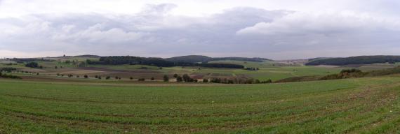 Panoramabild einer sehr welligen und hügeligen Ackerlandschaft mit Waldzungen auf den Kuppen mittig und rechts.