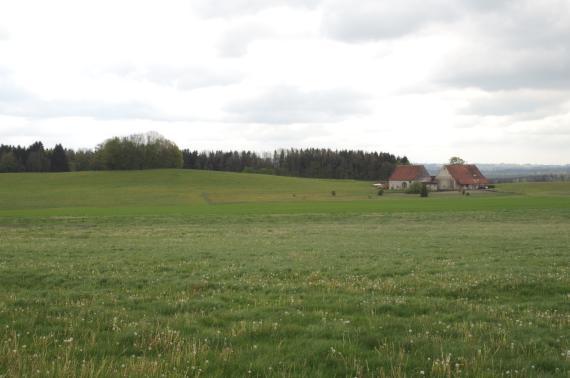 Blick auf eine mit Löwenzahn bedeckte grüne Wiese, an deren hinterem Ende rechts ein Bauernhof steht. Links erhebt sich ein langezogener grüner Hügel, dessen Kuppe bewaldet ist.