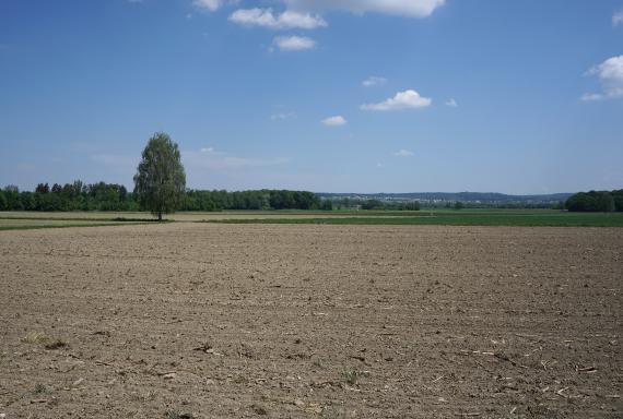 Blick auf weite, abgeerntete Ackerflächen, auf die sich im Hintergrund weitere Äcker sowie Wiesen, Waldstreifen und bewaldete Hügel anschließen.