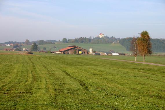 Blick über eine nach links ansteigende grüne Wiese auf einen von einer Burg bekrönten, bewaldeten Höhenrücken. Im Mittelgrund liegt ein Gehöft.