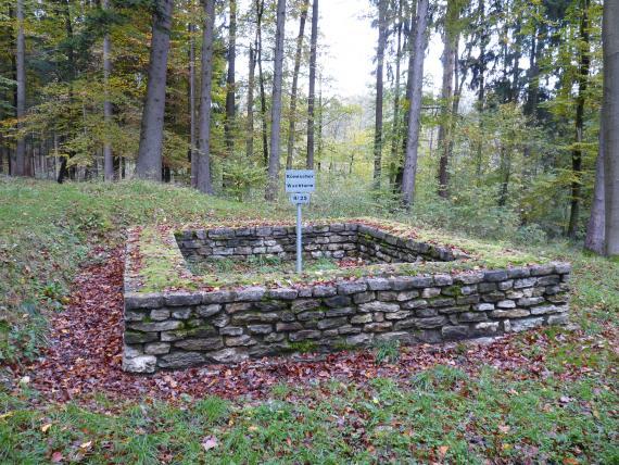 Das Bild zeigt die rechteckigen, aus teils abgerundeten Steinen zusammengesetzten Grundmauern eines römischen Wachturms am Rand eines lichten Waldes.