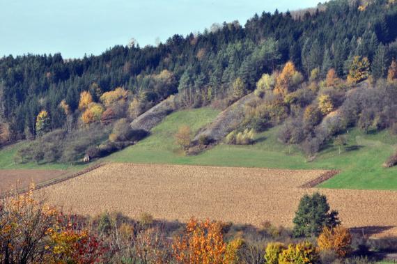 Blick auf einen nach rechts aufsteigenden, im oberen Teil bewaldeten Hang. Vom Waldrand abwärts ziehen sich mehrere große Steinriegel. Der untere, flachere Teil des Hanges zeigt Getreidefelder.