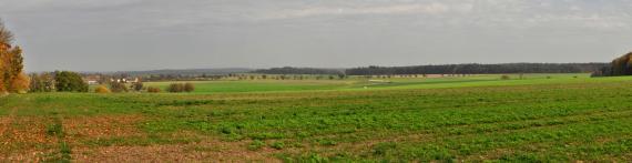 Panoramabild einer flachen, größtenteils aus bepflanzten Äckern bestehenden Landschaft mit Waldgebieten am fernen Horizont.