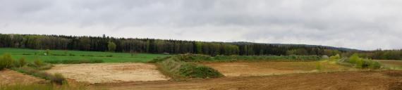 Übersichtsbild einer zweigeteilten Sandgrube. Die hellen Bereiche der Grube werden an den seitlichen und hinteren Rändern von dicht bewachsenen Abraumhügeln eingefasst. Ganz im Hintergrund verläuft Wald.