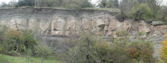 Panoramabild einer Hangabrisskante unter Wald mit aufgeschlossenem Gestein. Der mittlere Teil des offenliegenden Gesteins besteht aus bräunlich grauen, aneinandergereihten Steinblöcken.