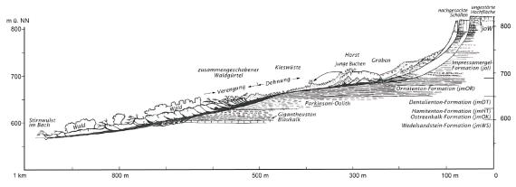 Schwarzweiß gezeichneter Längsschnitt eines Bergrutsches, Rutschung von rechts oben nach links unten.
